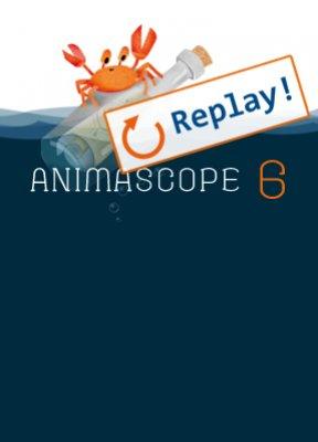 animascope 6 replay