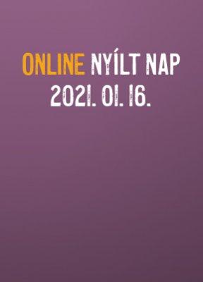 online-nyiltnap-202101161